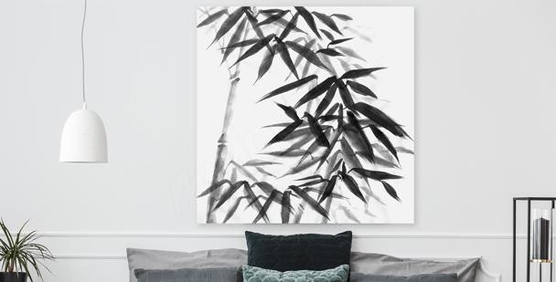 Schwarz-weißes Bild Bambus