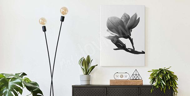 Schwarzweiss-Bild Magnolie