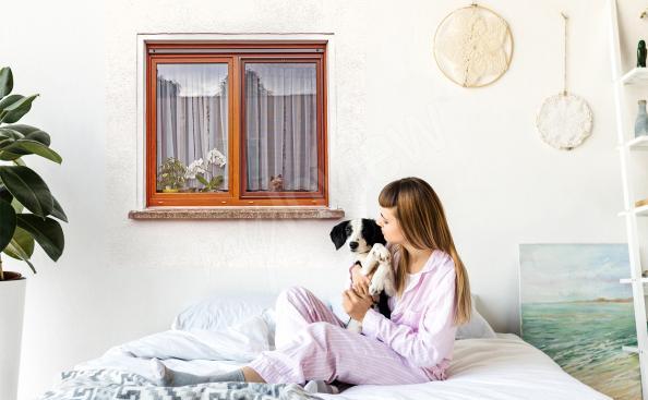 Sticker Fenster und Hund
